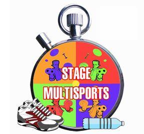 multisport288