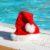 noel-piscine-2