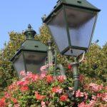 concours-%c2%ab-marche-commune-verte-et-fleurie-%c2%bb-2017