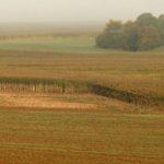 terrains-agricoles-contrats-de-commodat