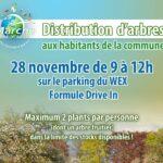 distribution-darbres-aux-habitants-formule-drive-in